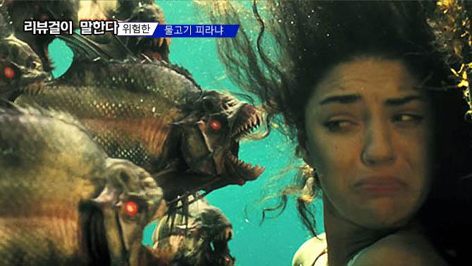 식인 물고기 피라니아