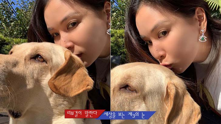 """고소영, 반려견 샤넬과 럭셔리한 근황 """"화보 같아"""""""