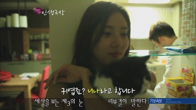 손담비 고양이 니나