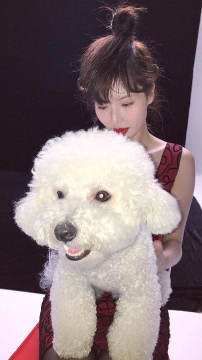 현아 '빨간 원피스+검은 스타킹+반려견' 무슨 화보?